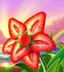 Профиль Erdbeerchen