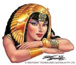 Профиль Ахинея-Я
