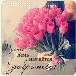 Профиль ЕЛЕНА_51