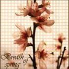 Профиль springnight
