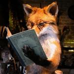 Профиль _Violet_fox