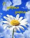 Профиль anusya_m