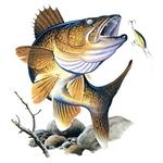 Профиль охота_рыбалка