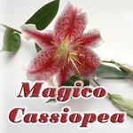 Профиль Magico_Cassiopea