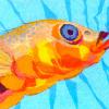 Профиль рыбка-мотылёк