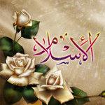 Профиль Salafia