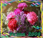 Профиль Prima2008