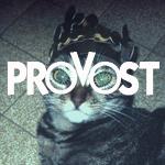 Профиль Provost