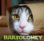 Профиль BarSolomey