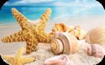 Профиль sunny_vacation