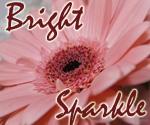 Профиль BrightSparkle