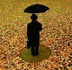 Профиль Друг_Дождя