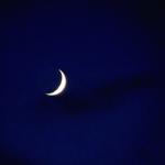 Профиль Сияние_Луны