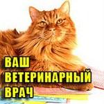 Профиль Ваш_Ветеринарный_Врач