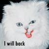 Профиль The_White_Cat