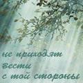 Профиль Зеркальный_ничей