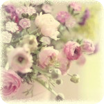 Профиль lily-lind