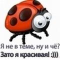 Профиль Кисточка_Донецк