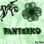 Профиль Panterk