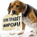Профиль Злобный_КАКТуС