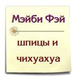 Профиль Шпицы_и_чихуахуа_Мэйби_Фэй