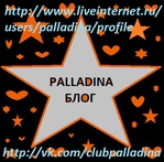 Профиль Palladina