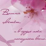 Профиль Vivenne