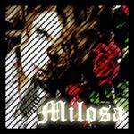 Профиль Milosa