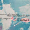 Профиль Барбариска-5