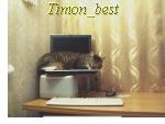 Профиль Timon_Best