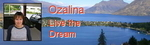 Профиль Ozalina