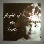 Профиль flight_of_the_beetle