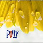 Профиль крошка_Polly