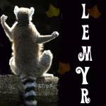 Профиль Lemyr