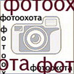 Профиль Фотоохота