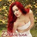 Профиль Dracurina