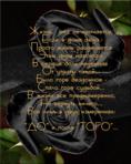 Профиль _М_Светлана