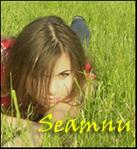 Профиль seamnu