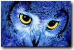 Профиль Lazzy_Owl