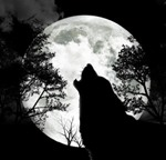 Профиль Phantom_shadow