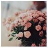 Профиль Lidia_Leona
