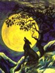 Профиль Wolfs_Lair_Abyss