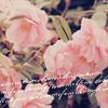 Профиль Bonnie_March