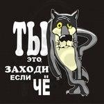 Профиль сорока_ворона