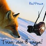 Профиль Kettuna
