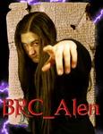 Профиль BRC_Alen