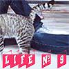 Профиль LifeNninE