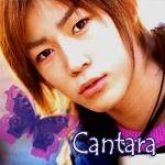Профиль Cantara