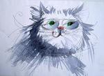 Профиль wise-cat
