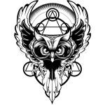 Профиль BlackOwl